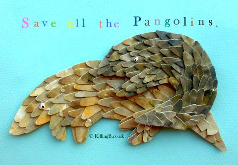 Pangolins